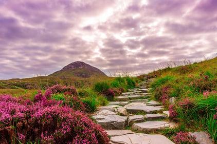 Ireland - Connemara